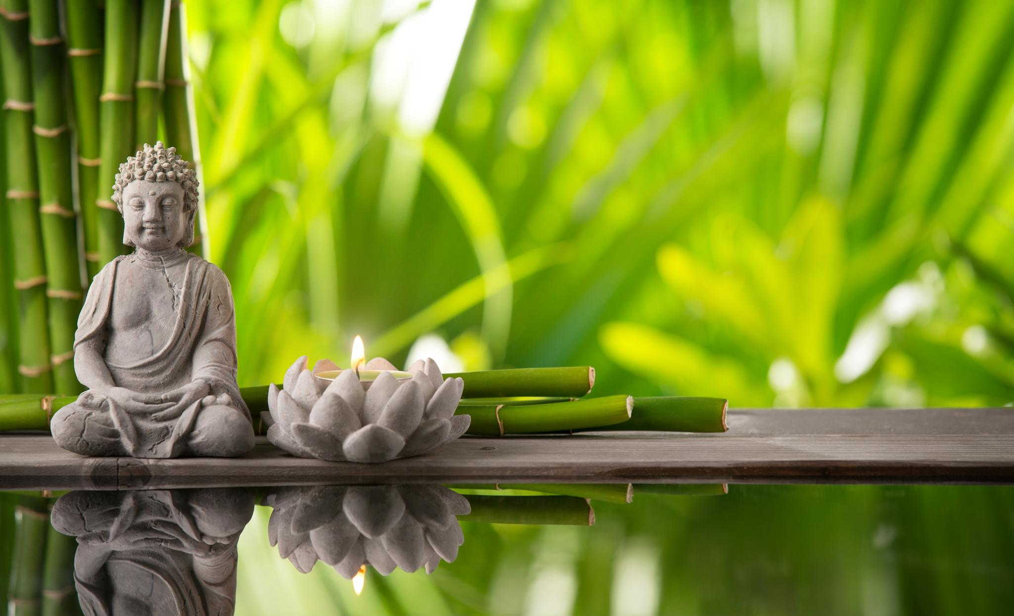 Buddha in bamboo garden. Information about acupuncture.